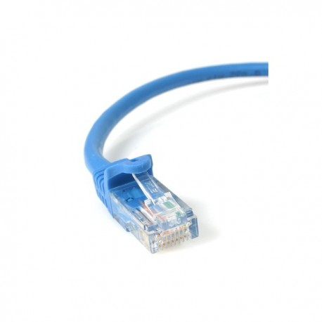 StarTech.com 1 ft Blue Snagless Cat5e (350 MHz) UTP Patch Cable
